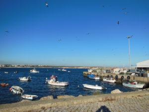 Sagres Hafen 1